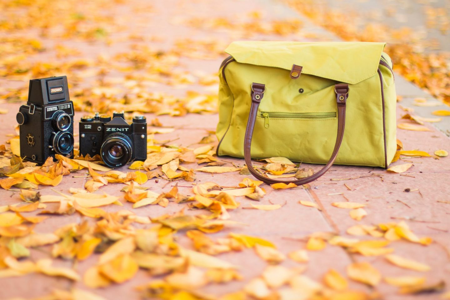 Holiday fashion: Green handbag on pavement with 2 cameras beside it and leaves all around.
