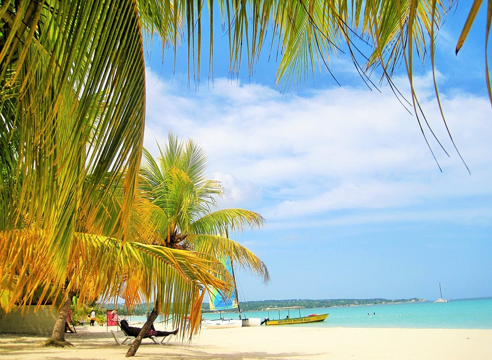 White sandy beach with green palm trees: Caribbean islands