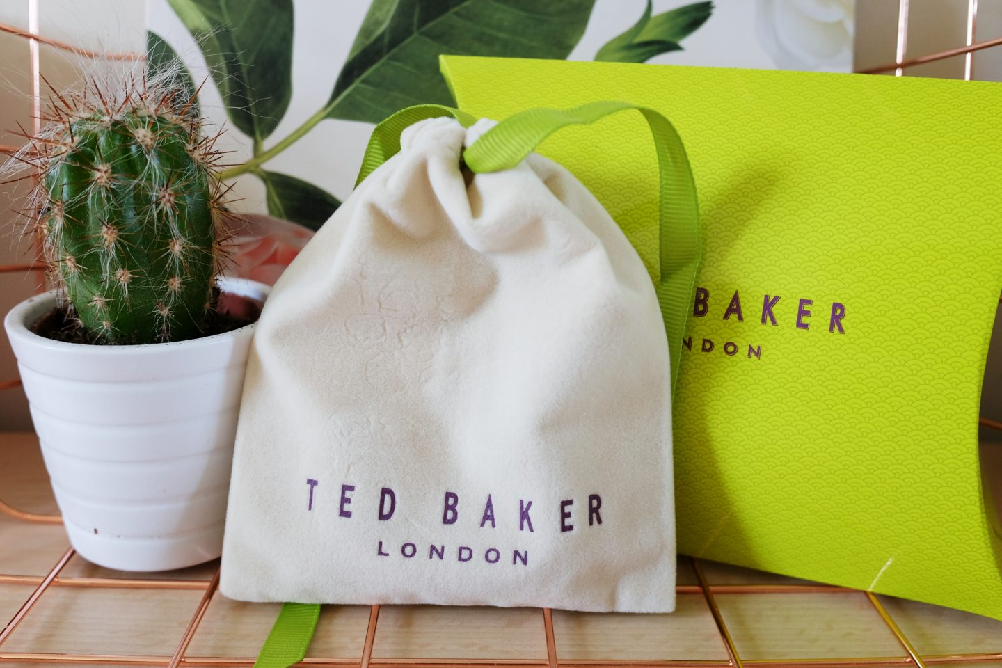 Mother's Day Gift: Ted Baker bag in white and green.