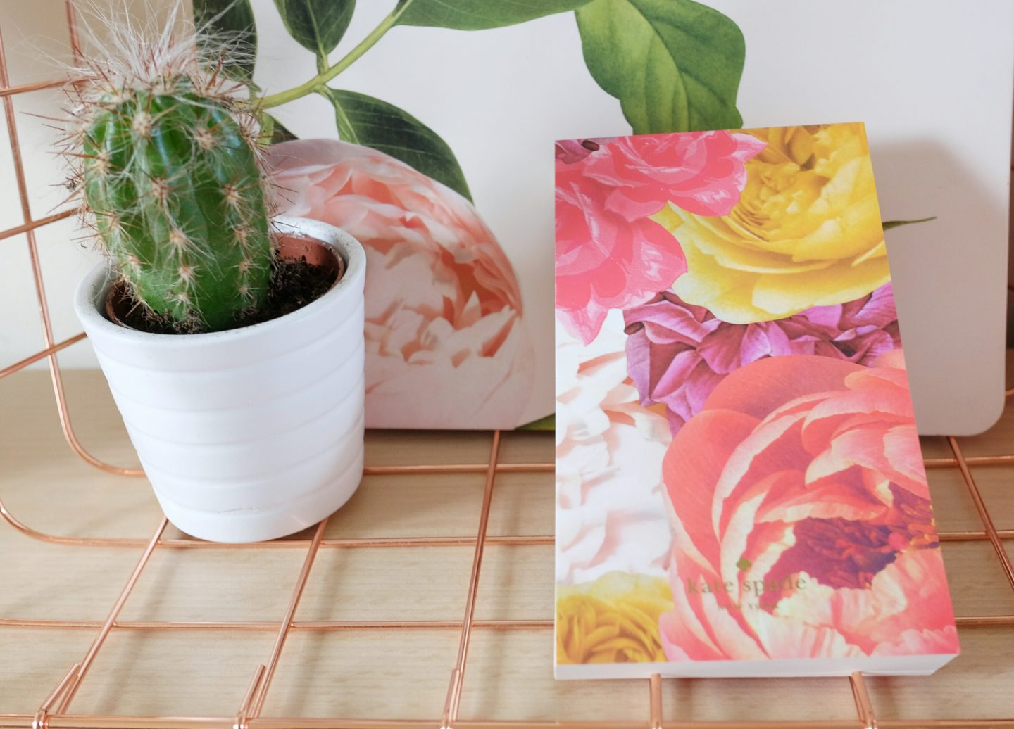 Mother's Day Gift: cactus plant in white small plant pot and flowery notebook.