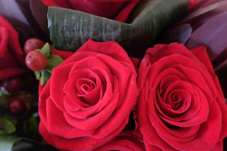 Review of Prestige Flowers
