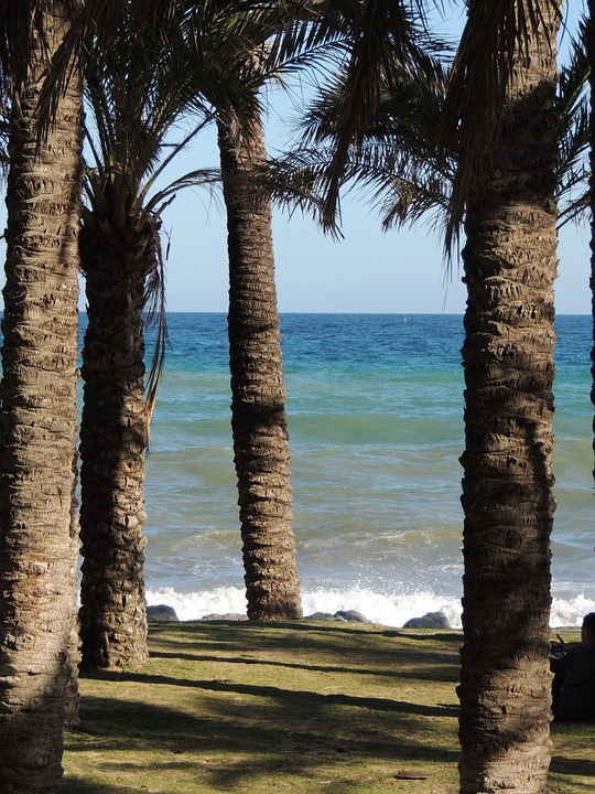 Grassy areas in Playamar Beach.