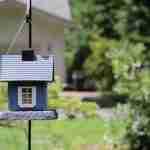 increase your living space: birdhouse in garden.