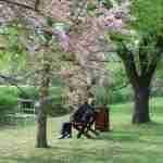 dating for older people: 2 older people sitting on a park bench.