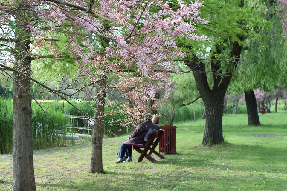 dating for older people: 2 older people sitting on a park bench.