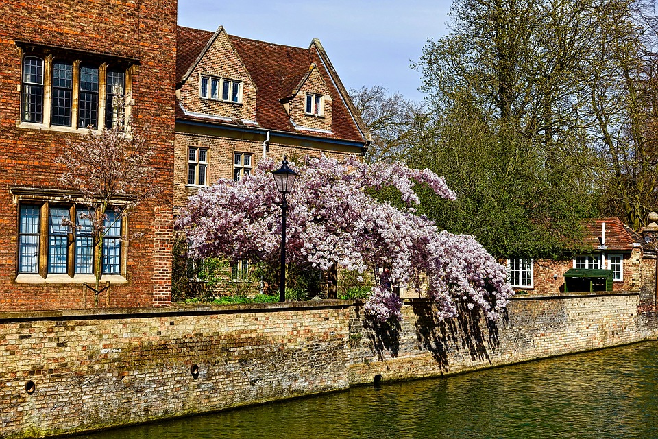 Riverside house - Cambridge. easy packing tips.