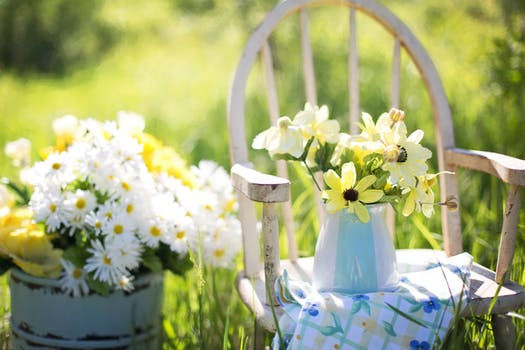 Working on Your Green Thumb? Here are the Basic Tools You Need for Gardening
