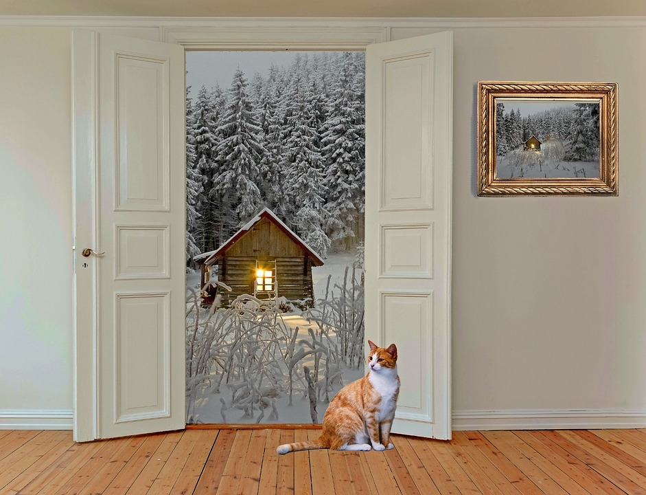 keep your house warm remotely: Wooden floored room with white bi-folding doors open leading out to snowy winter scene and a ginger cat looking in by the doors.