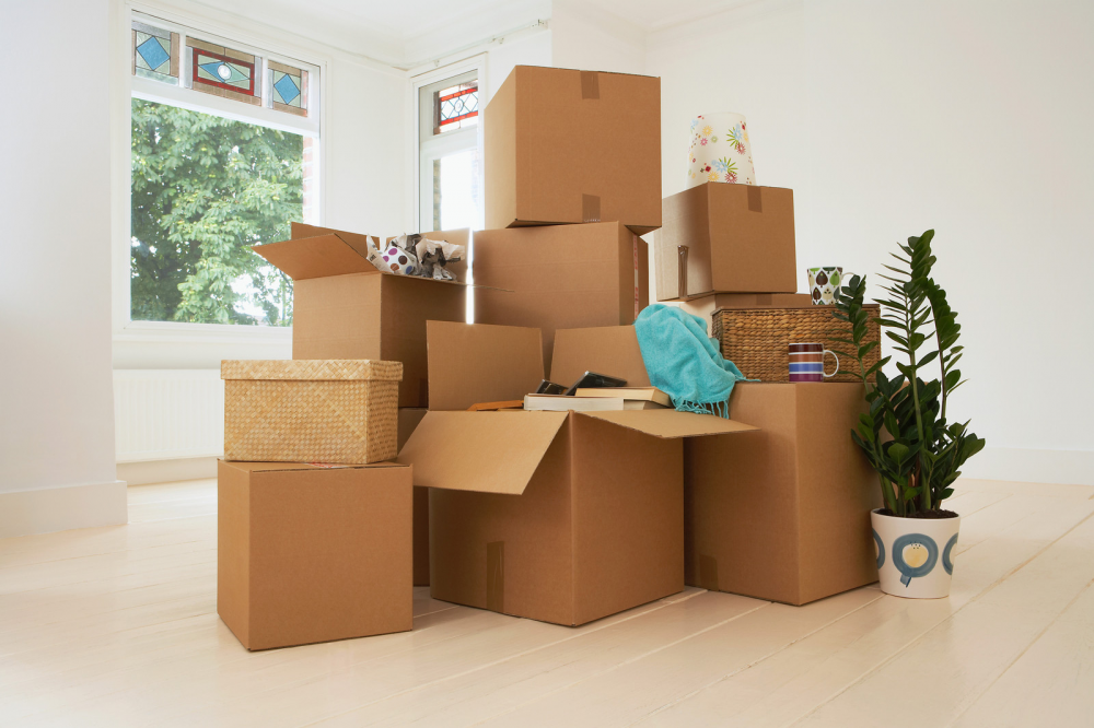 moving out of your parents' house: multiple cardboard boxes in living room.