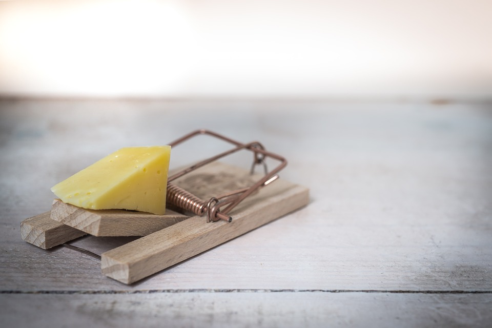 Wooden mousetrap on a floor with a piece of cheese attached.