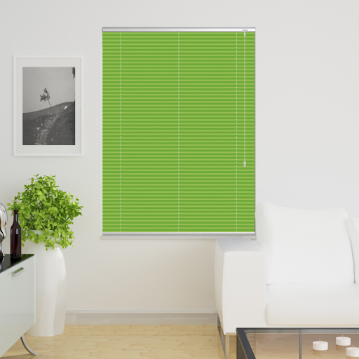 window dressing: green blinds in living room.