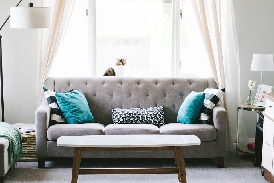 interior designer: re-designed living room.