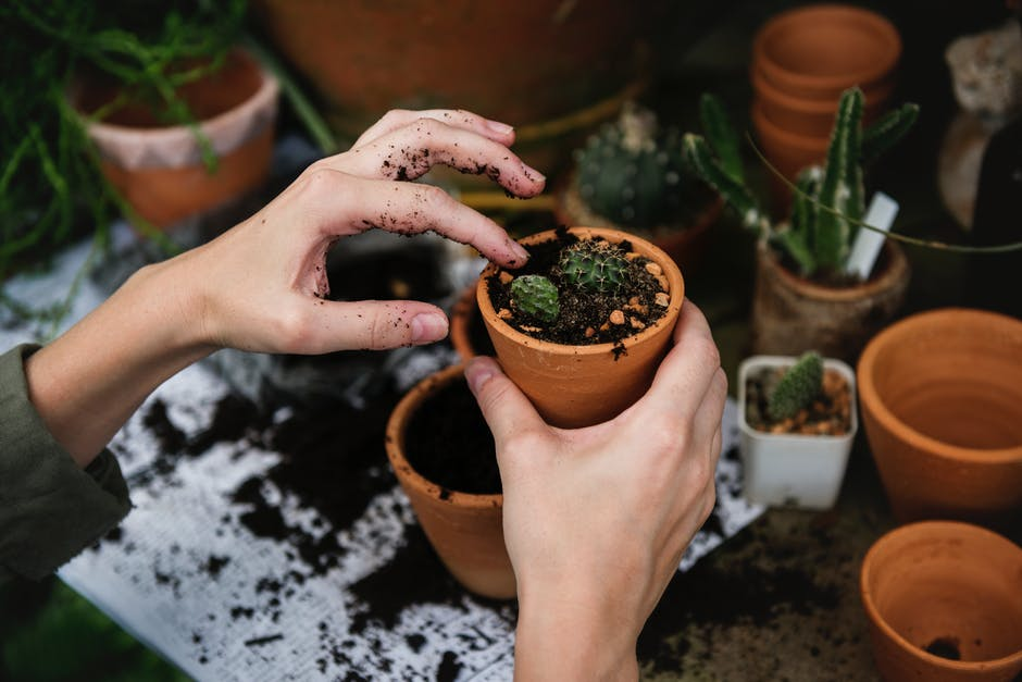self-care tips: Young woman filling small plant pot with soil.