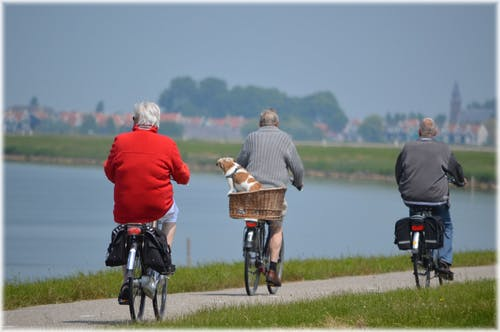 Ageing gracefully: 3 older people cycling by a body of water