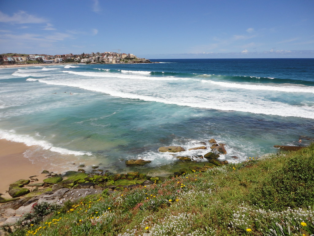 4 Can't Miss Activities to do in Sydney