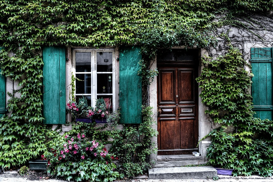 facade of house with ivy and shutters