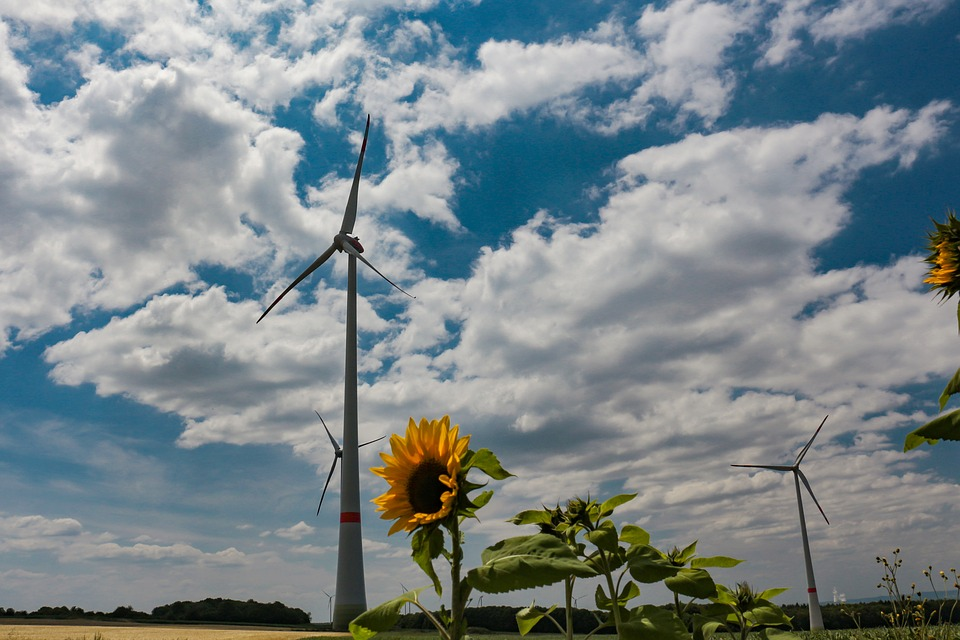 Become greener: blue sky with some clouds, sunflowers and a wind turbine.