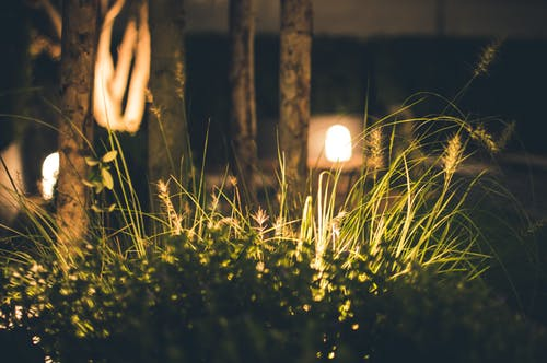 6 Very Important Outdoor Lighting Tips