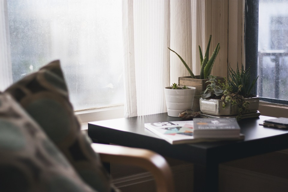 Make Your Rental Feel Like Home: corner of a room with a table and chairs and books and aloe plants on the table