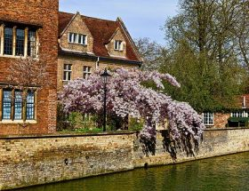 River Cam: my favourite places to eat in Cambridge.