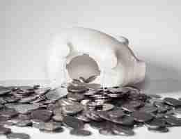 white piggy bank: earn money online