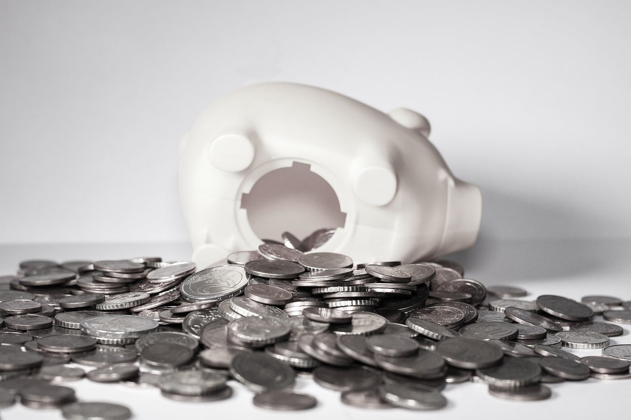 white piggy bank: earn money online