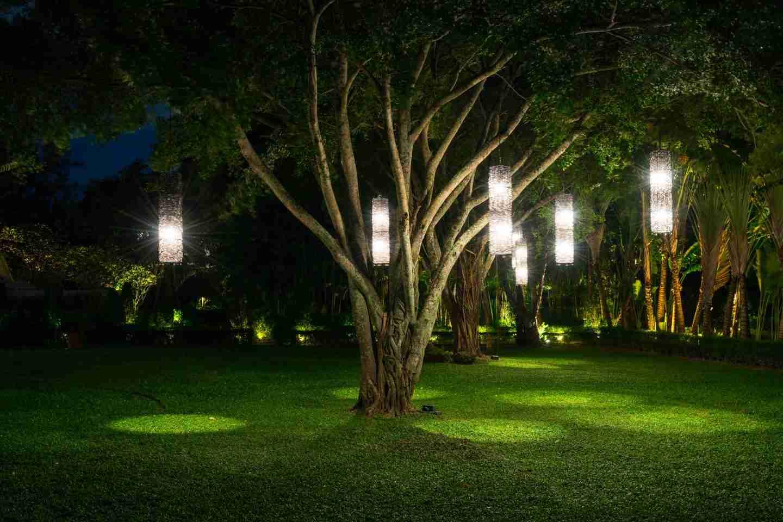 tree with lamp lighting in garden